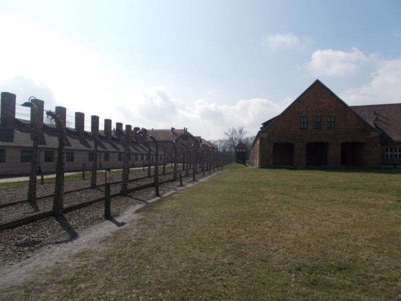 Az alábbi album képeit nézegeted: Rendhagyó történelem- emlékóra Auschwitzban